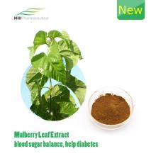1 DNJ Mulberry Leaf Extract/Morus Alba Extract