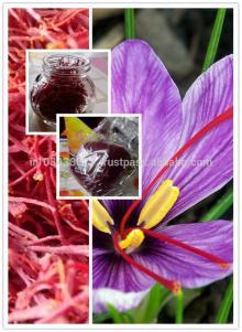 iranian saffron saffron tea