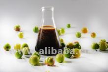 Organic Acerola Concentrate 18% Vit. C