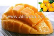 High Quality Newest Crop Mango Pulp & Concentrates