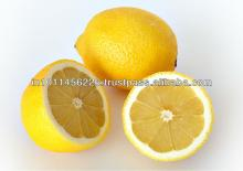 indian Fresh Lemon for sales