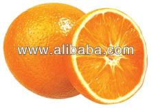 Orange  Turkish  Fresh