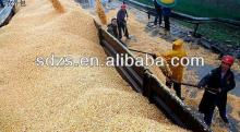 good quality yellow corn for animal feed grade specification