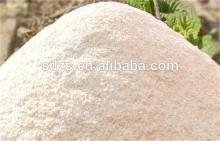 Good flour wheat flour bread flour for sale