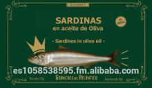 conserva de sardina en aceite de oliva