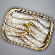 Best of quality sardine on sale with best of price