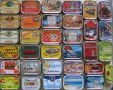 Top quality sardine on sale