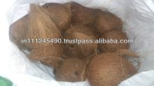Indian Fresh  Coconut   Export ers