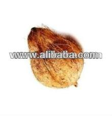 Semi Husked coconut for export