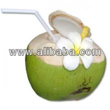 Fresh Coconuts products,Vietnam Fresh Coconuts supplier