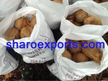 Semi Husked Coconut - 25 nuts in bag