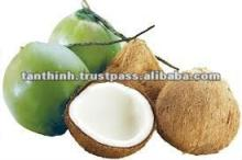 Matured and Young Coconut