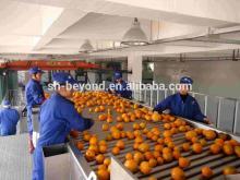 Citrus juice production line