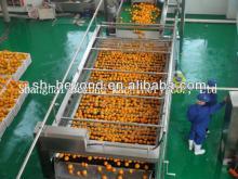 Complete Orange Fruit  Juice   Processing   Line