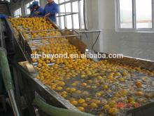 Fresh citrus juice production line