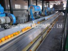 200 tons per day automatic Orange citrus processing line fruit juice production line