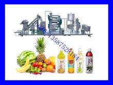 Complete Fruit Juice Processing Line (Hot Sale)