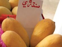 Mango   exporter s/suppliers/distributers from  Pakistan ,