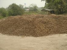 Tapioca Starch, Cassava Starch, Native Tapioca Starch