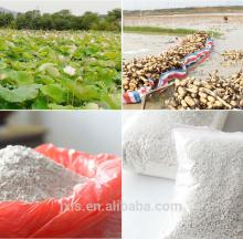 China lotus root starch