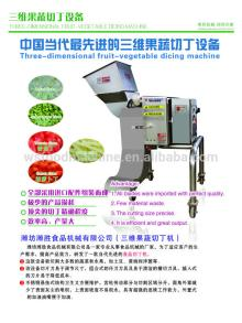 Fruit-Vegetables Dicer Machine