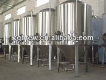 CG-300L of micro hotel brewery equipment