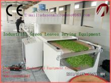 Big capacity microwave dryer/roaster for  green   leaves