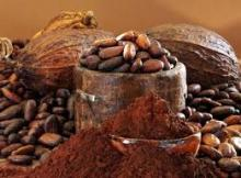 Alkaline Cocoa Powder 100%