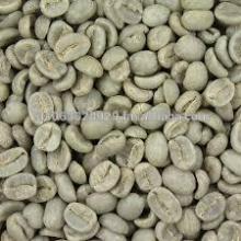 Green Caffee Bean Extract;Chlorogenic Acid;Green Caffee Bean P.E.