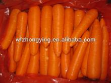 carrots, red carrot, fresh carrot