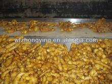 price small mesh bag fresh  ginger  export  usa  up 250g in market