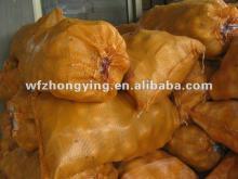 2012  Holland potato ( new  corp)