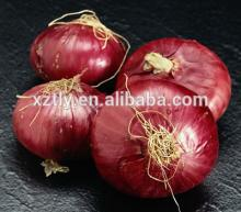 2014  Fresh   red   big   onion s in China