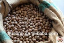 Indonesian Nutmeg products,Indonesia Indonesian Nutmeg supplier