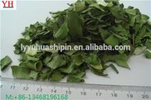 100% nature AD dried green leeks
