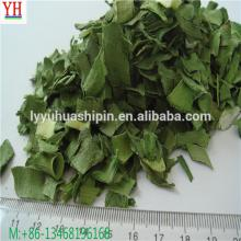 high quality low price dried green leek