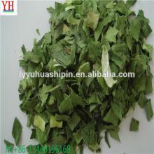 Air dried green leeks dehydarated vegetables