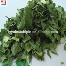 north west growing origin AD dried green leeks