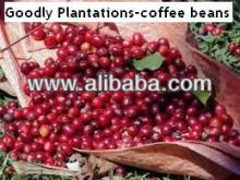 coffee beans stockists