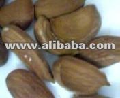 almond kernel  iran