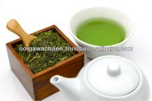 Specifically selected japanese green tea extract powder by tea masters
