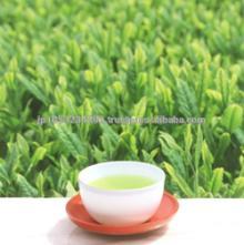 High quality and healthy japanese organic diet tea using green tea
