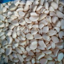 china frozen IQF peeled garlic clove