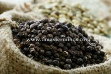 Vietnam Pepper (Black Pepper, White Pepper)