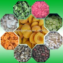 Wholesale Green giant frozen vegetables