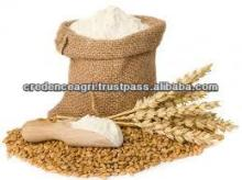 Wheat Flour For Specification
