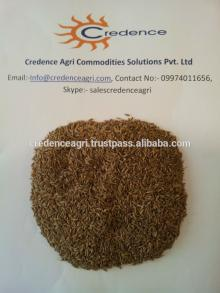 singapore  quality   cumin   seeds  from india