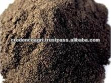 Indian Black Pepper Seeds Powder For Sale