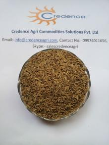 98% Europe Quality Cumin Seeds For UAE