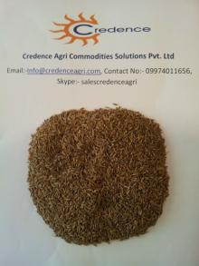 98% Europe Quality Cumin Seeds For Yemen